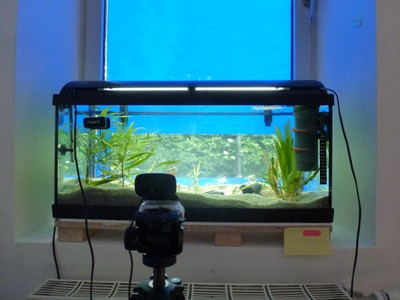 Aqwebcam